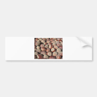 Autumn fruit Closeup of hazelnuts Food background Bumper Sticker