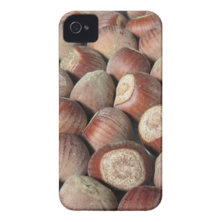 Autumn fruit Closeup of hazelnuts Food background iPhone 4 Case-Mate Case
