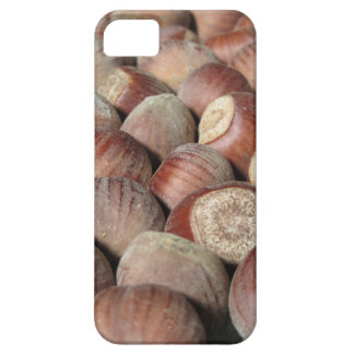 Autumn fruit Closeup of hazelnuts Food background iPhone 5 Cover