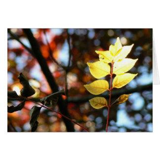Autumn golden ash leaf notelets cards