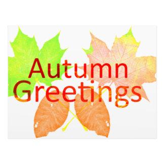 Autumn Greetings Postcard