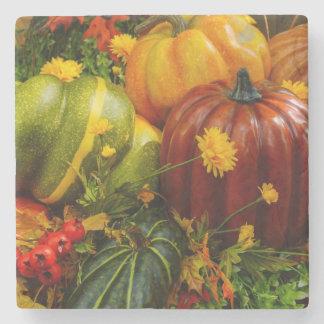 Autumn Grouping Stone Coaster