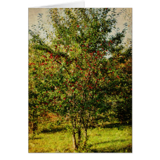 Autumn HArvest Card