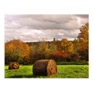 Autumn Harvest Post Card