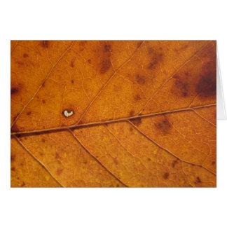 Autumn Heart Leaf | Blank Photo Card