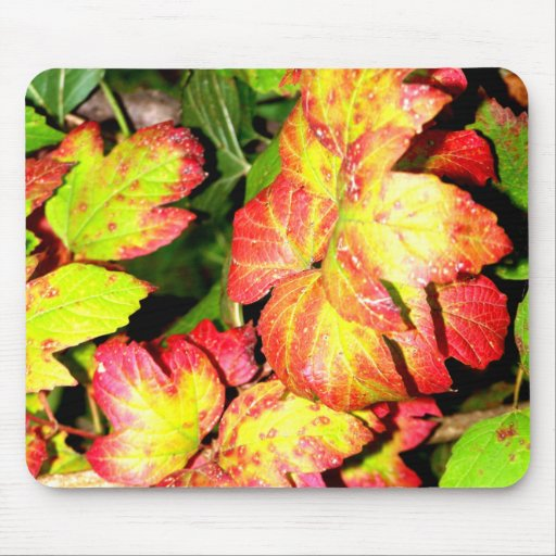 Autumn Hydrangea Leaves Mouse Pads