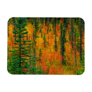 Autumn in a meadow magnet