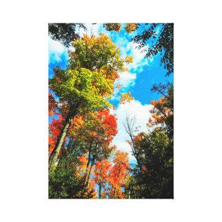 Autumn In Algonquin, Canada Canvas Print