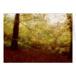 Autumn in Broakes Wood Greeting Card