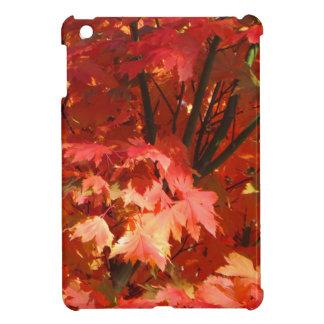 Autumn in Canberra iPad Mini Covers