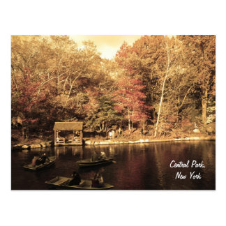 Autumn in Central Park Postcard