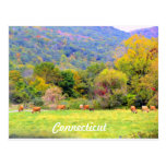 Autumn in CT Postcard