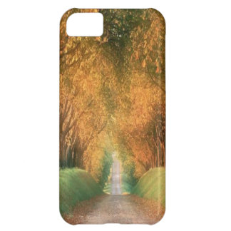Autumn in Germany Case-Mate iPhone 5 iPhone 5C Case