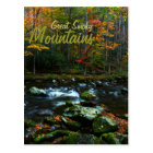 Autumn in Great Smoky Mountains Postcard
