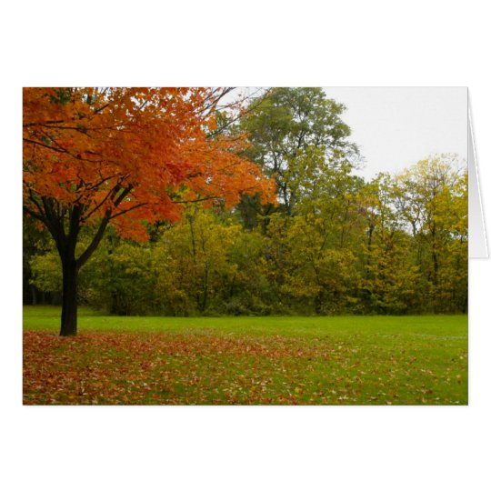 Autumn in Highland Park Card