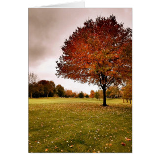Autumn in Iowa Card