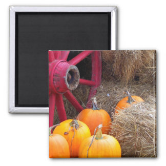 Autumn_In_Maine_9 Square Magnet