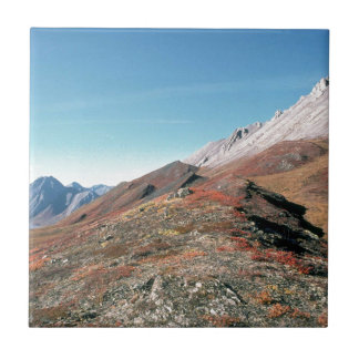 AUTUMN IN MOUNTAINS SCENIC SMALL SQUARE TILE