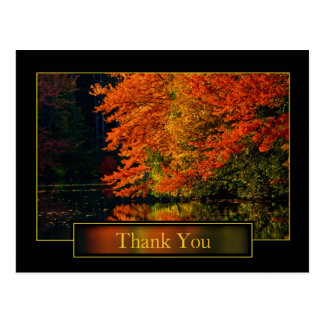 Autumn In New England Thank You Postcard