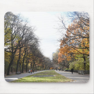 Autumn in New York City Riverside Park NYC Photo Mouse Pad