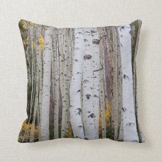 Autumn in the Aspen's Cushion