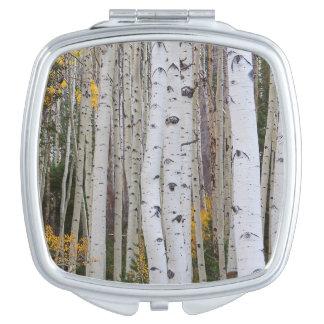 Autumn in the Aspen's Makeup Mirror