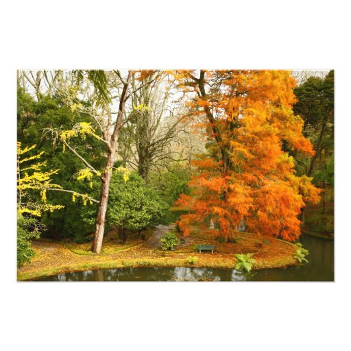 Autumn in the park photo print