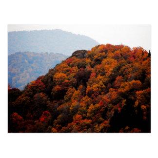 Autumn in the Smokies Postcard