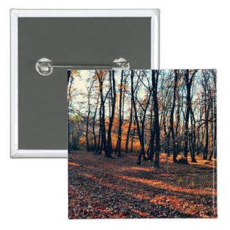 Autumn in the woods pinback button