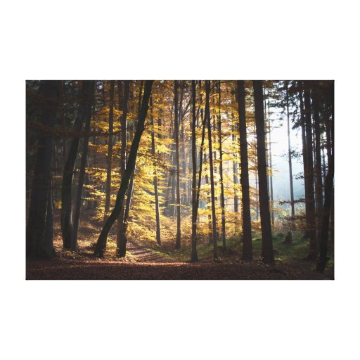 Autumn in the Woods. Stretched Canvas Prints