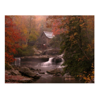 Autumn in the Woods Postcard
