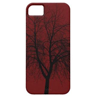 Autumn iPhone 5 Cover