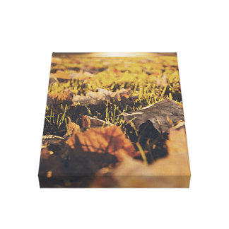 Autumn is in the city gallery wrap canvas