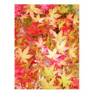 autumn.jpg postcard