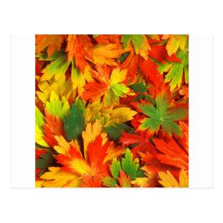 Autumn Kaleidoscope Of Postcard