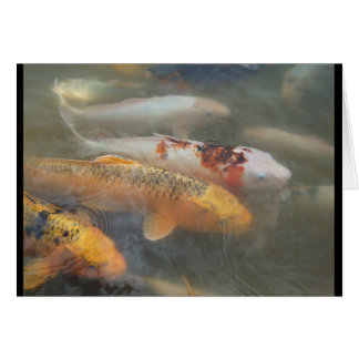 Autumn Koi Blank Notecard