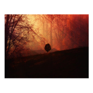 Autumn Landscape Art, Tree on Hill Orange Brown Postcard