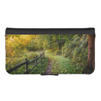 Autumn Landscape, Pathway In A Forest