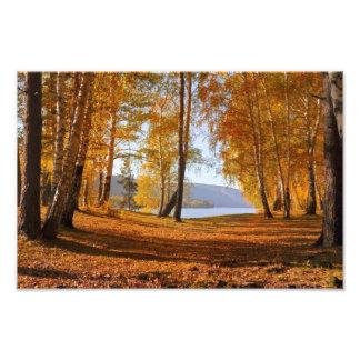 Autumn Landscape Photo Print
