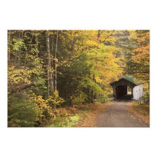 Autumn landscape, Vermont, USA 2 Photographic Print