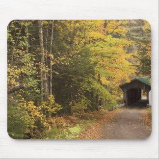 Autumn landscape, Vermont, USA 4 Mouse Pad