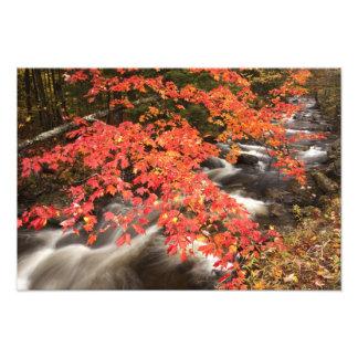 Autumn landscape, Vermont, USA 4 Photographic Print