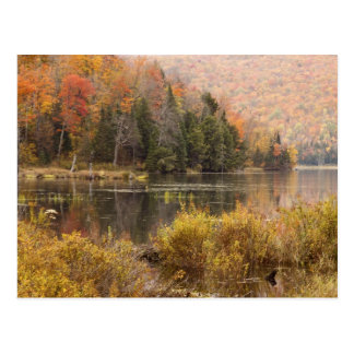 Autumn landscape with lake, Vermont, USA 3 Postcard
