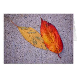 Autumn Leaf (2) Greeting Card