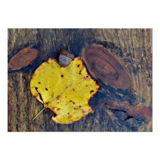Autumn Leaf & Acorn on Wood Nature Photography Poster