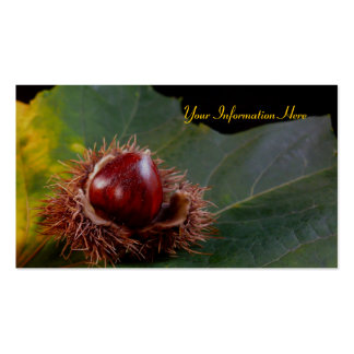Autumn Leaf and Nut Business Cards