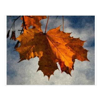 Autumn Leaf Artwork Postcard
