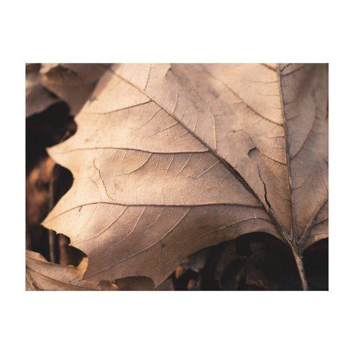 Autumn Leaf Gallery Wrap Canvas
