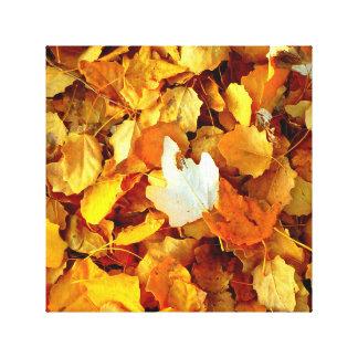 Autumn leaf canvas prints