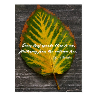 Autumn Leaf Emily Bronte Quote Postcard
